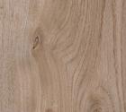 Oak knotty